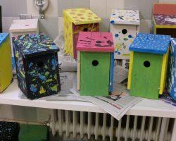 Taller de construcción de cajas nido 05