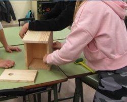 construcción de caja nido